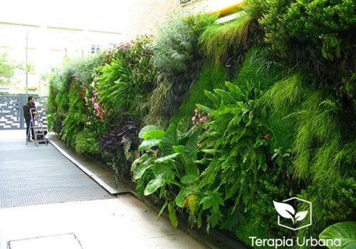 jardin vertical en hospital sagrado corazon sevilla
