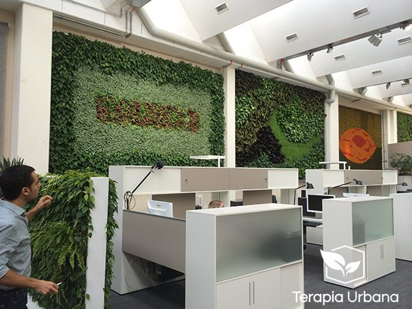 Jardin vertical interior en oficina showroom de empresa for Oficinas de empresa
