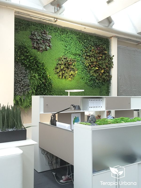 Jard n vertical interior 2 en oficina showroom de empresa for Jardines verticales interiores