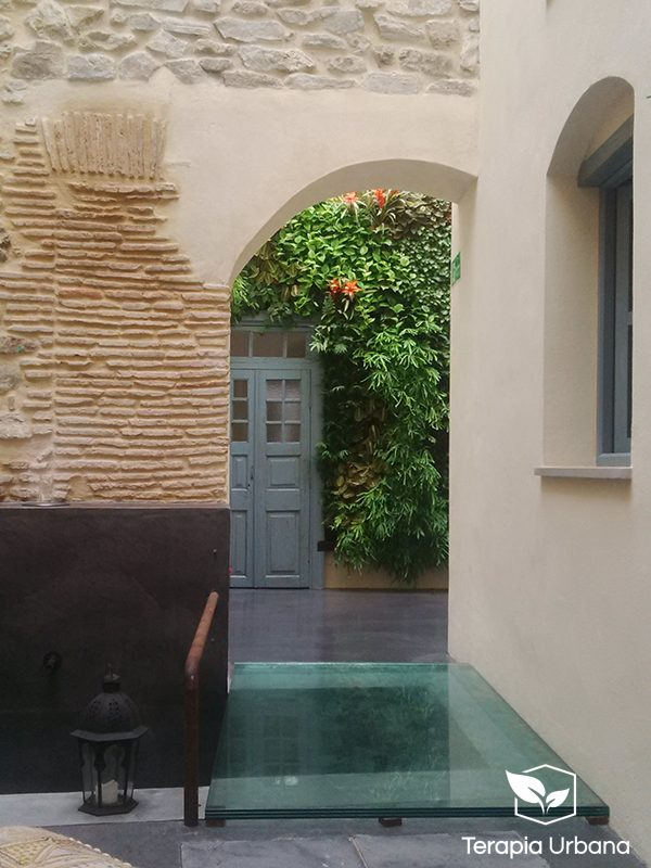 Jard n vertical interior en hotel the riad tarifa c diz - Jardin vertical interior ...