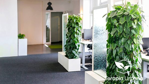 Jard n vertical interior en showroom de m nich terapia - Jardin vertical interior ...