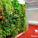 Jardín vertical en oficinas de Questra World en Madrid