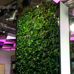 Indoor living wall at Plexal's Offices