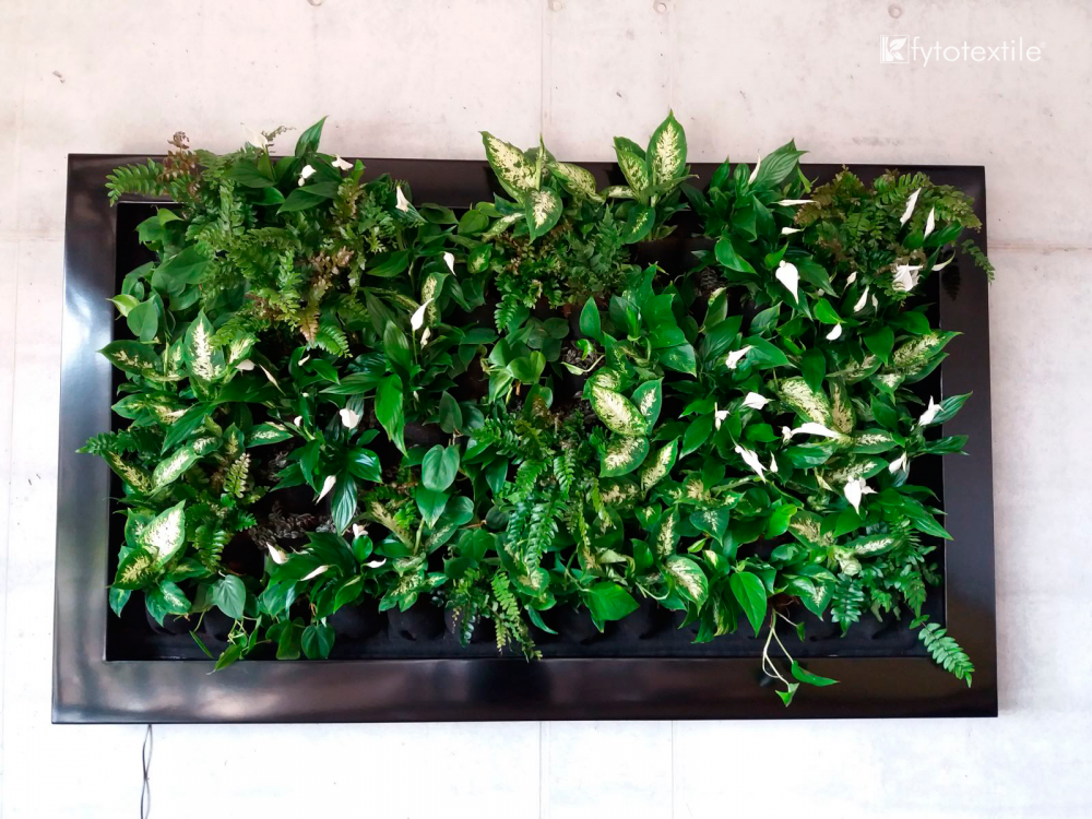 living wall hadart