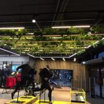 Hanging planters in Asics store in Amsterdam